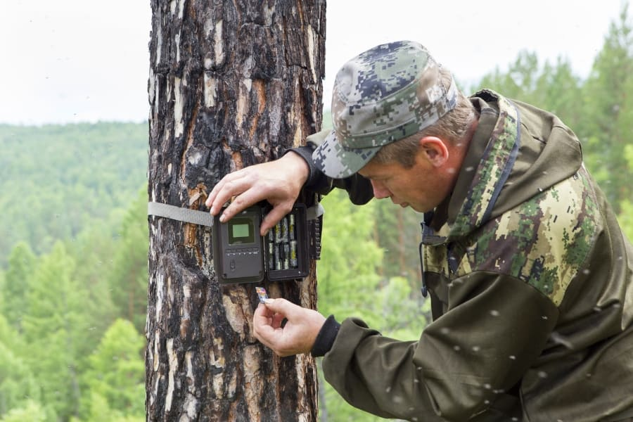 Man setting up wireless trail camera to tree while positioning to scout for hunting and security