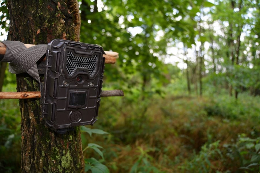 how to use a trail camera for home security